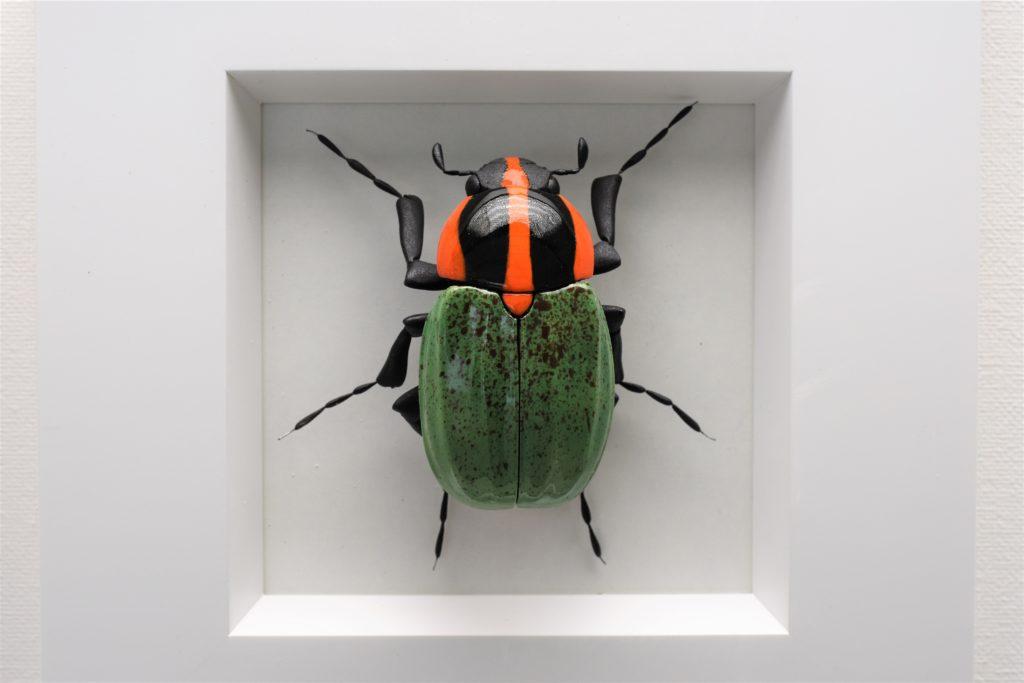 Grün-schwarz-orangefarbener Käfer von Ross de Wayne Campbell