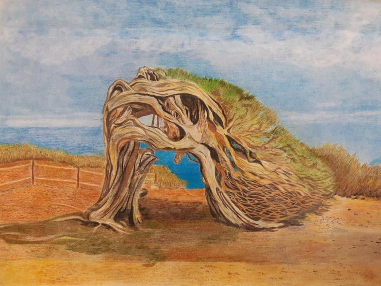 Annemie Gottschalk: Baum Geflecht