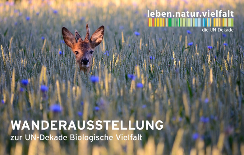 UN Biologische Vielfalt