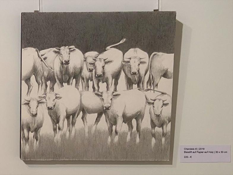 """Angelika Schneeberger, Ausstellung """"wo Licht ist"""" im Inklusiven Begegnungszetrum der Gold-Kraemer-Stiftung, Charolais III"""