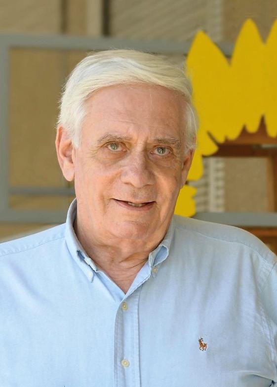 schwarz-grüner Koalitionär Peter Huppertz